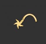 Nasenstecker aus Chirurgenstahl Gold mit Stern